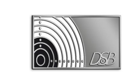 Pin in Silber